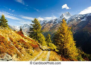 La cima de la montaña de Bietschorn en otoño con senderos de excursión