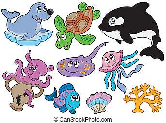 La colección de peces marinos y animales