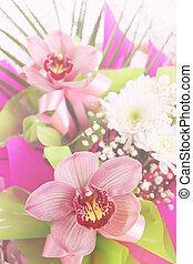 La composición de la flor de la phalaenopsis