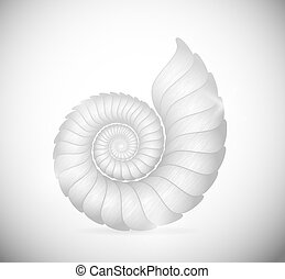 La concha marina