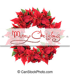 La corona de Navidad de poinsettia