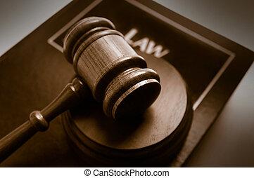 La corte dio en un libro de leyes