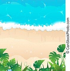 La costa del océano tropical