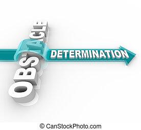 La determinación supera un obstáculo
