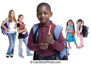 La diversidad escolar