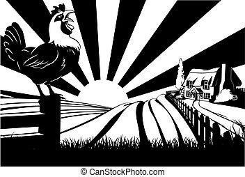 La escena de la granja de gallos