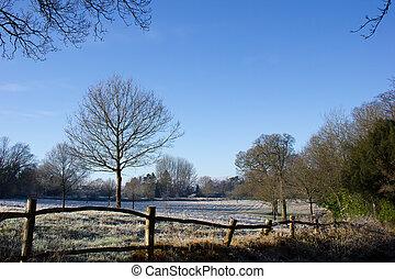 La escena del campo en invierno