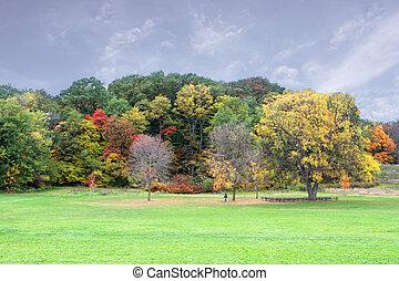 La escena del otoño