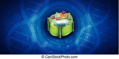La estructura celular de la planta