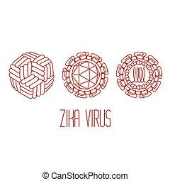 La estructura del virus Zika