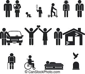 La etapa de la vida. Nacimiento y adolescencia, juventud, adultez, vejez, muerte