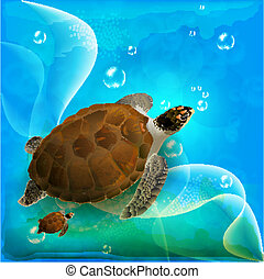 La familia de las tortugas nada en el océano
