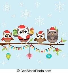 La familia navideña de los búhos