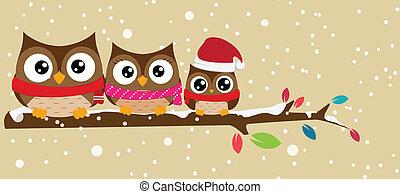 La familia Owl en la sucursal de Navidad