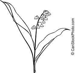 La flor del valle
