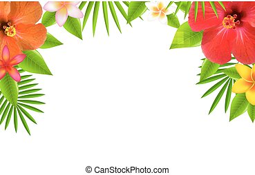 La frontera de las flores tropicales