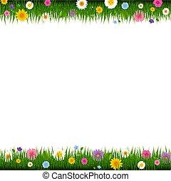 La frontera entre la hierba y las flores