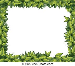 La frontera está hecha de hojas
