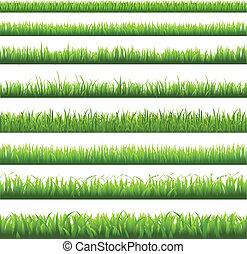 La frontera verde de la hierba