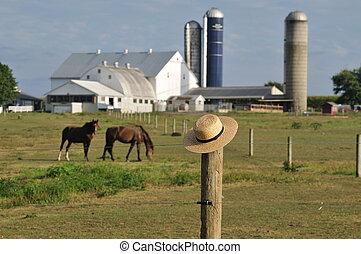 La granja amish del condado de Lancaster