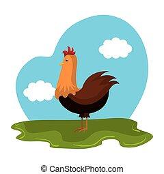 La granja de animales de pollo en el campo