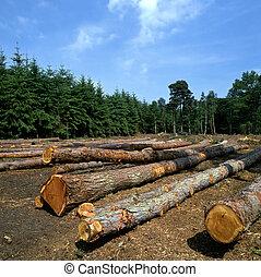 La granja de troncos