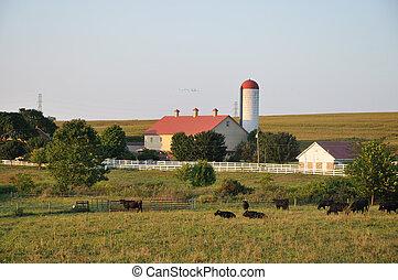 La granja Lancaster en verano