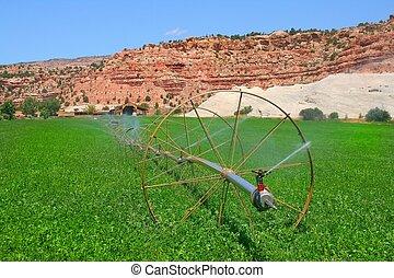 La granja Redrock 6