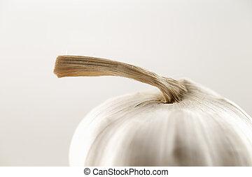 La hermosa forma de bombilla de ajo