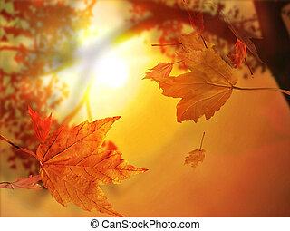 La hoja de otoño cae