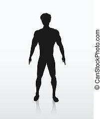 La ilustración de la silueta del cuerpo humano