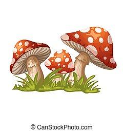 La ilustración de un hongo rojo en t