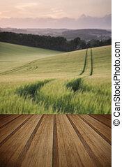 La imagen del paisaje de verano del campo de trigo al atardecer con la hermosa I