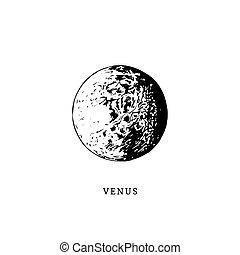 La imagen del planeta Venus en el fondo blanco. Ilustración de vectores a mano
