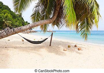 La isla de la playa tropical de la palmera Hammock