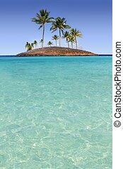 La isla de las palmeras del Paraíso es una playa tropical