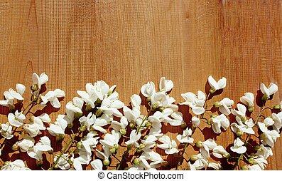 La listeria blanca florece en la madera