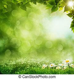 La mañana de belleza en el bosque verde, los ecos