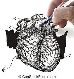 La mano atrae el corazón