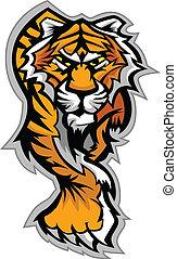 La mascota del tigre vector gráfico