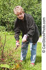 La mujer corta los arbustos del jardín