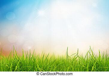 La naturaleza primaveral con hierba y cielo azul atrás