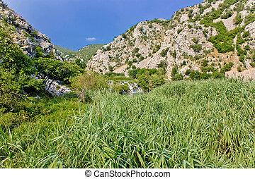 La naturaleza verde del río Krupa
