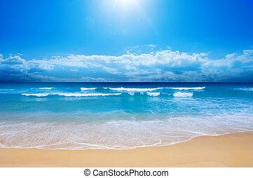 La playa del paraíso