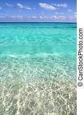 La playa tropical caribeña limpia agua turquesa