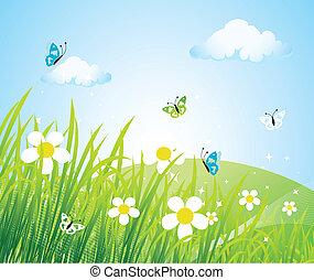 La pradera de primavera es hermosa