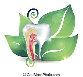 La sección de dientes y hojas. Un brillante concepto de tratamiento abstracto