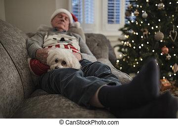 La siesta de Navidad con el perro