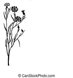 La silueta del vector de la flor de campo de fondo blanco