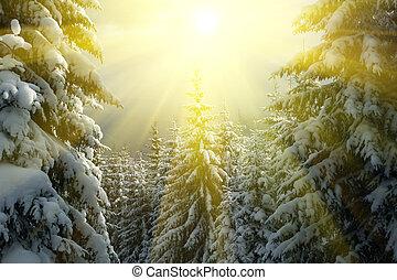 La temporada de invierno
